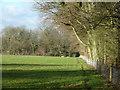 TQ3854 : Footpath towards Woldingham by Robin Webster