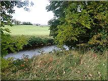 J2333 : The Upper Bann from the Ballynagappoge Road by Eric Jones