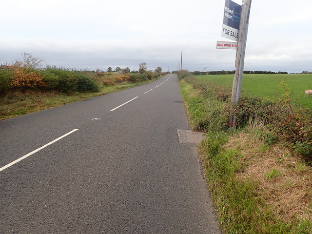 View West along the A25 (Castlewellan Road)
