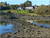 SH5571 : Looking from Church Island towards the Anglesey mainland by Robin Drayton