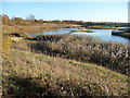 SE8833 : View south-east from Turret Hide by Christine Johnstone