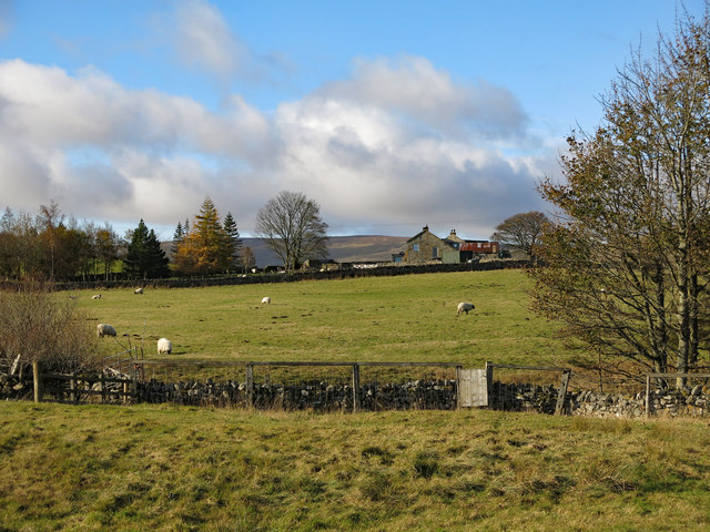 Farmland between Low Rigg and Middle Rigg