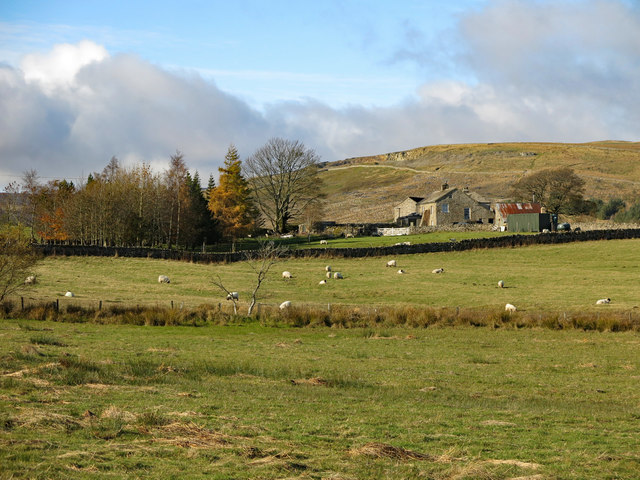Farmland east of Middle Rigg