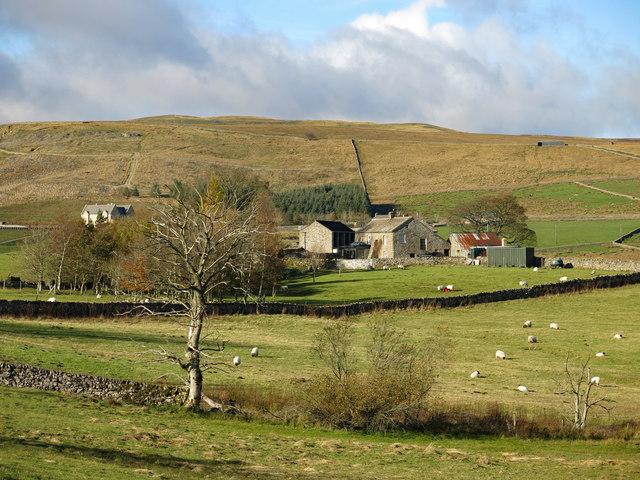 Farmland around Middle Rigg