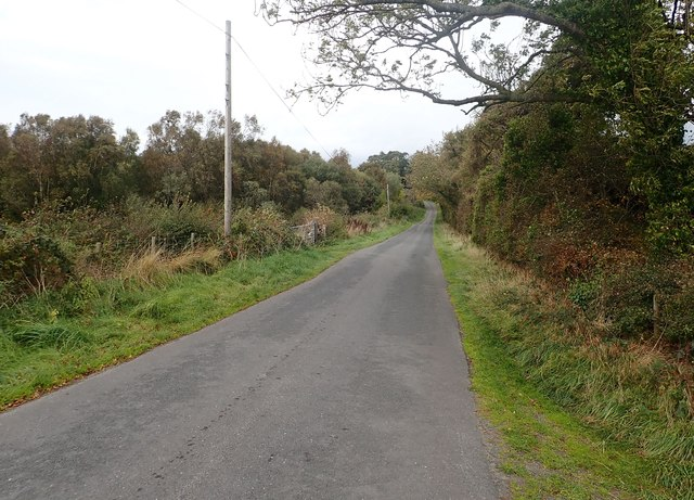 View NNW along the southern section of Bannfield Road