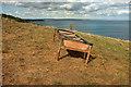 SX9268 : Animal feeder above Maidencombe by Derek Harper