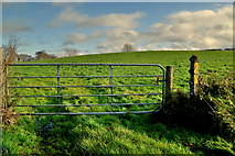 H5472 : Gate and field, Bracky by Kenneth  Allen