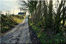 H5572 : Muddy along Roeglen Road by Kenneth  Allen