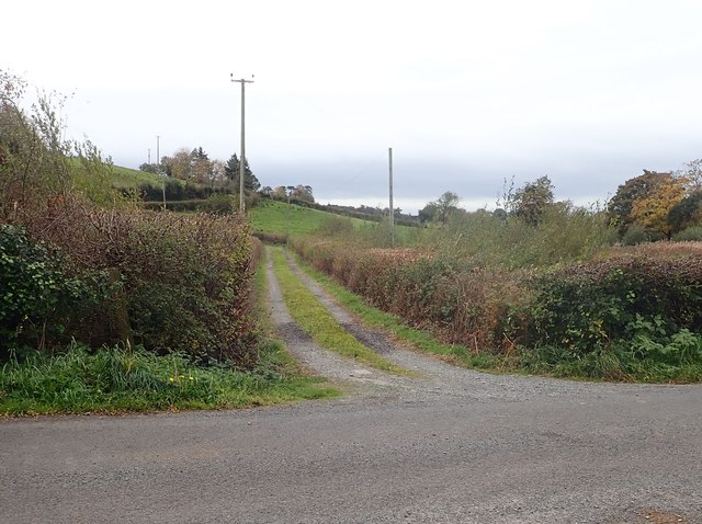 Farm access lane leading South from the Bannfield Road