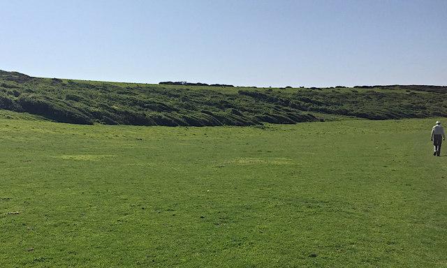 Wind-pruned bushes below Crowlink