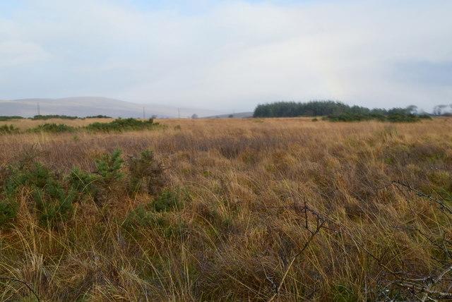 Heathland, Boheragh
