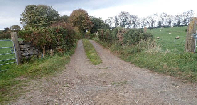 Field access  lane running North from the Islandmoyle Road