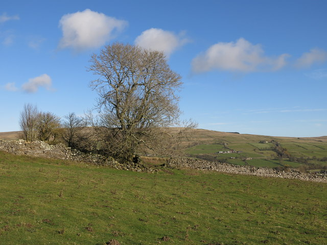 The remains of White Hills farmhouse