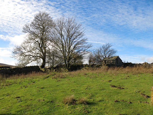 The remains of White Hills farmhouse (4)