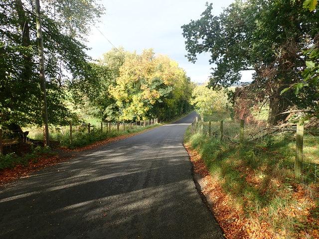 The Cabra Road North of Cabra Lodge