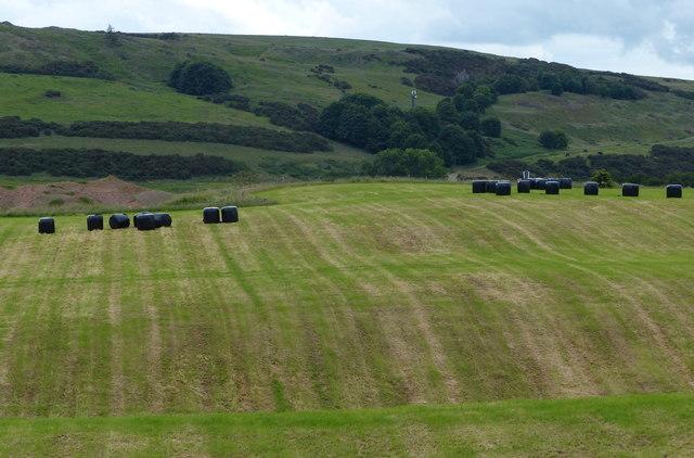 Farmland and bales near Newton Hill