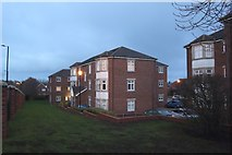 NZ3372 : Flats off Rosemount Way, West Monkseaton by Graham Robson