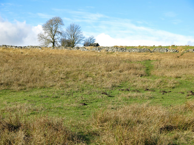 Ireshope Moor below the remains of White Hills farmhouse