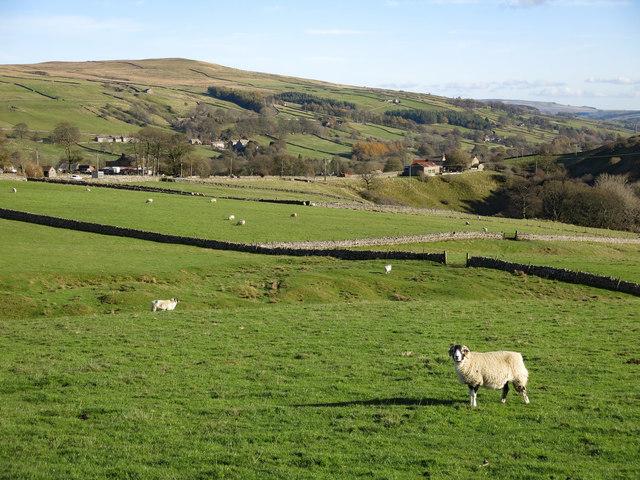 Farmland east of Slack House