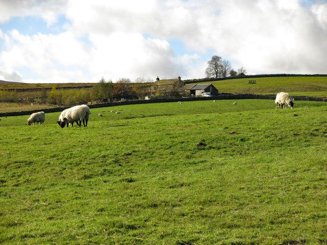 Farmland around Slack House (2)