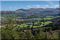 NY2125 : Whinlatter Forest by Ian Capper