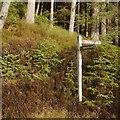 NN4400 : Signpost, Loch Ard Forest by Richard Webb