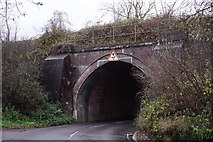 TQ3853 : Railway Bridge Near Oxted by Peter Trimming