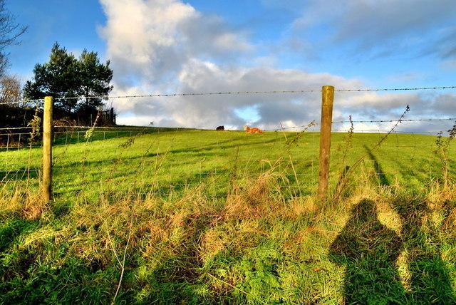 Mullaghmenagh Upper Townland