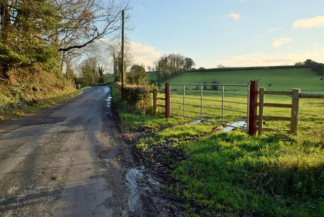 Muddy along Aghnamoyle Road