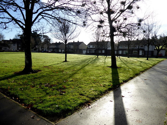 Tree shadows, Winters Gardens, Omagh