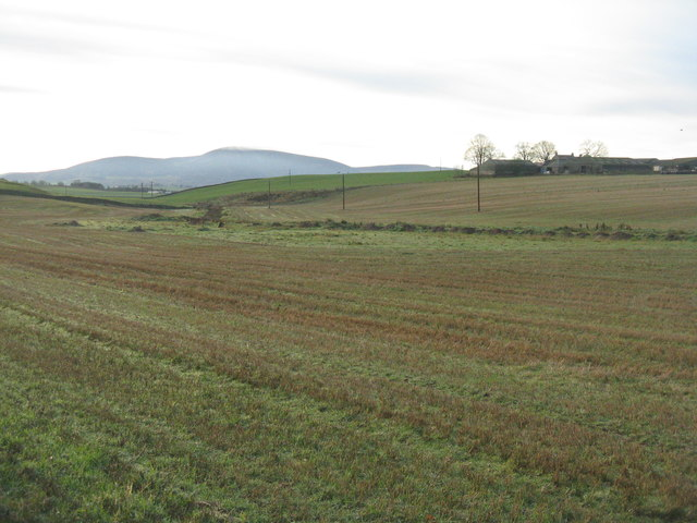 Stubble fields at Carlindean