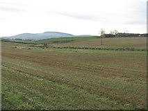 NS9947 : Stubble fields at Carlindean by M J Richardson