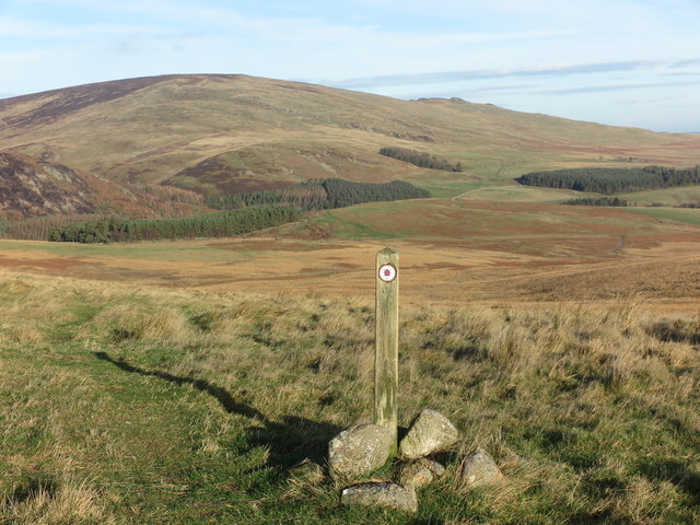 Marker Post on Restricted Byway to Alnhammoor