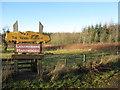 NS9951 : Entrance to The Wood Place - Lanarkshire Hardwoods by M J Richardson