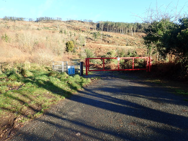 Entrance to the Slieve Guillion Forest Park from the northern end of Forest Road
