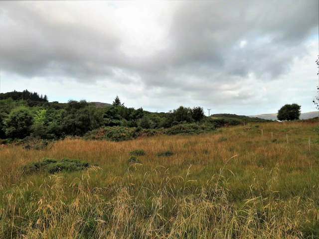 Grass and Woodland on Ulva