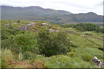 V9080 : Rocks at Ladies View by N Chadwick