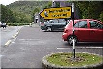 V9080 : Leprechaun Crossing, Ladies View by N Chadwick