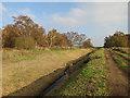 TL2188 : Track to Holme Fen by Hugh Venables