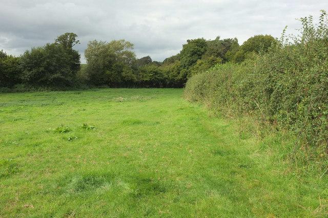 Meadow near Paradise
