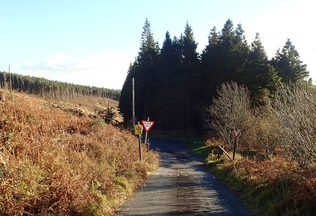 The exit motor road from the Slieve Gullion Forest Park approaching the junction with the two way road descending to the B113