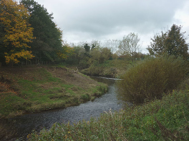 Meander on the Wyre