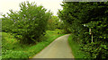 ST5861 : Three Peaks Walk on Knowle Hill by Derek Harper