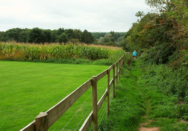 Footpath to Walley Lane