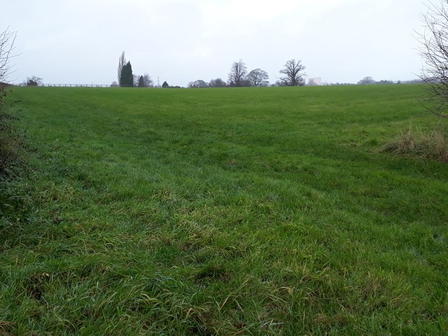 Farmland east of Moat Farm