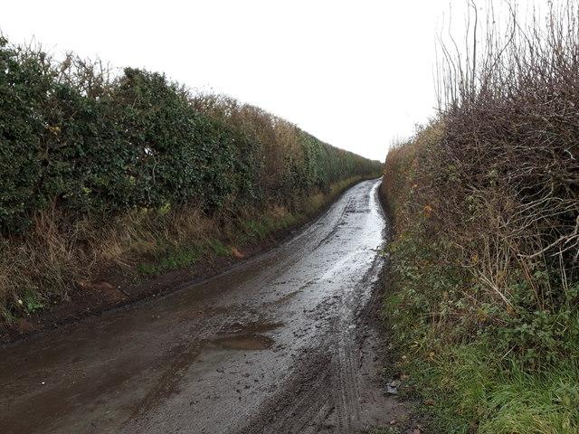 Smithy Lane, heading north-west