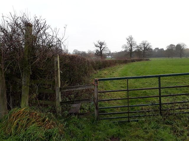 Public footpath to Longdon Green
