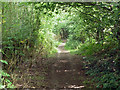 TQ4257 : Footpath towards Main Road by Robin Webster