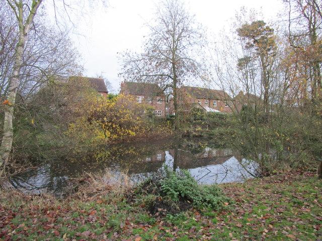 Pond in the Church Garden, Beeford