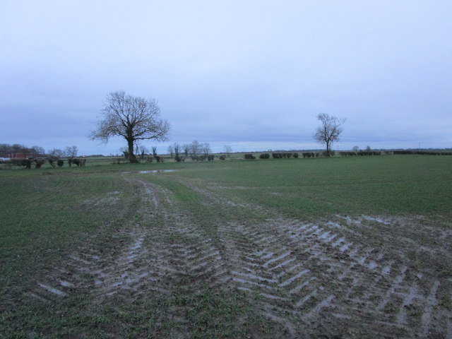 Muddy field on the edge of Beeford